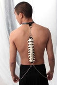 Image of OS ACCESSORIES<br>SPINAL CORD HARNESS
