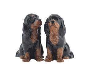 Image of KING CHARLES SPANIEL SALT & PEPPER SHAKERS