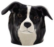 Image of BORDER COLLIE EGG CUP