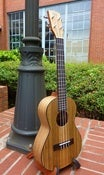 Image of KALA Pacific Walnut Tenor w/bag set up