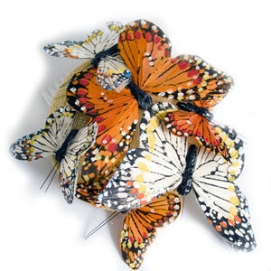 Image of Flutterby Baby Fascinator - Sunshine
