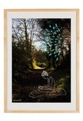 "Image of Print ""Bohemian forest"""
