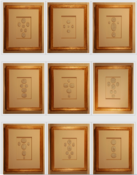Image of Framed intaglios, set of nine
