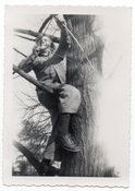 Image of KID WITH BOW AND ARROW IN A TREE VINTAGE SNAPSHOT