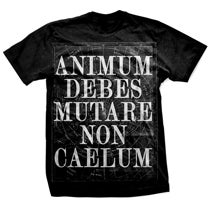 Image of ANIMUM DEBES MUTARE NON CAELUM shirt