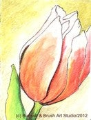 Image of Tulip Bud - Pen &amp; Ink Illustration