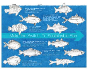 Image of Sustainable Fish Switch ~ Archival Print