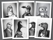 Image of Extinct Birds 7-Print Set | Prints