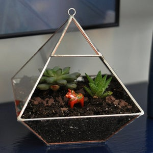 Image of Air Terrarium Kit, large