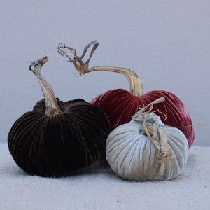 Image of Velvet Plush Pumpkin Saddle Trio