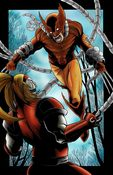 Image of WOLVERINE VS OMEGA RED - COLORED PRINT