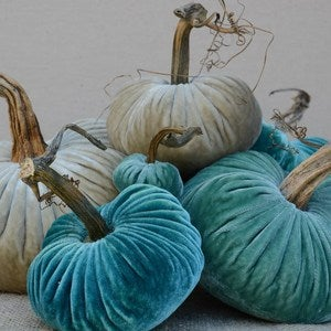 Image of Velvet Plush Pumpkin Turquoise Large Set