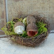 Image of Velvet Pumpkin Acorn Nest Medium