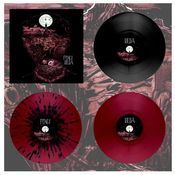 "Image of DK028: Foxes / Iselia - Split 12"" LP - Cherry Cola w/ Splatter /150, Cherry Cola /200"