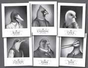 Image of Fowl Fraternity 6-print set | Prints