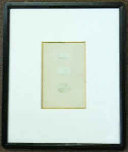 Image of Custom framed antique Morris egg prints, 9 of 12
