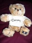 Image of Cornish Teddy