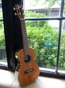 Image of Ohana Redwood/Rosewood Concert w/case