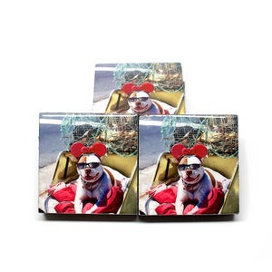 Image of Mickey Mutt Beer Coasters