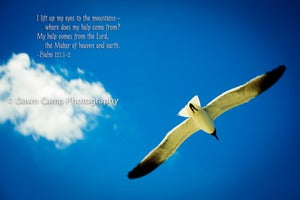 "Image of Gull in Flight with Verse on an 8"" x 12"" Standout Professionally Printed on Metallic Paper"