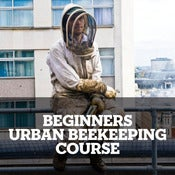 Image of Beekeeping taster session