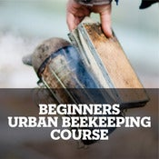 Image of Beekeeping taster session – September October 2013