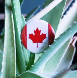 Image of Canadian Flag Badge