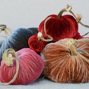 Image of Velvet Plush Pumpkin Design Large Set