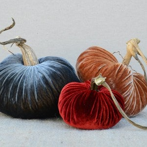 Image of Velvet Plush Pumpkin Design Trio