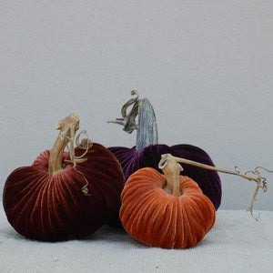 Image of Velvet Plush Pumpkin Royal Trio