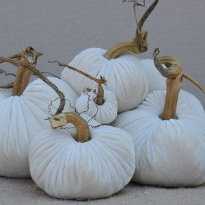 Image of Velvet Plush Pumpkin Snow Large Set