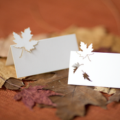 Image of autumn place cards