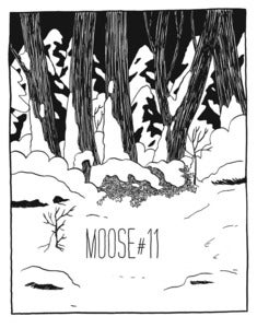 Image of Moose #11