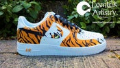 "Image of ""Siberian Tiger"" Custom Air Force One Low"