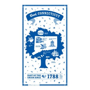 Image of Connecticut State Towel