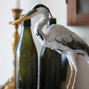 Image of HERON