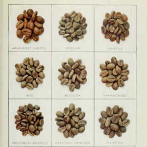 Image of Coffee Slimming