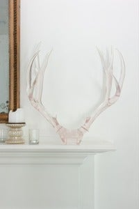 Image of  Deer Rack