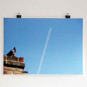 Image of 'Pigeon and Plane' A2 giclee print