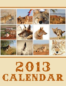 Image of SUPER SALE! 2013 Charlie Calendar