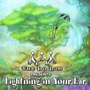 Image of Lightning In Your Ear - LIB Artist Compilation CD