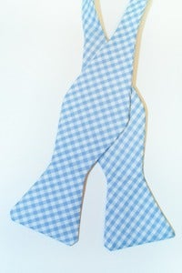 Image of Baby Blue Gingham