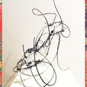 Image of Wire Shoe