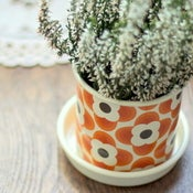 Image of Small Plant Pot by Orla Kiely