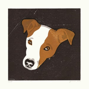 Image of CAPTAIN (Jack Russel)