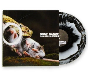 Image of Snakecharmers 12""