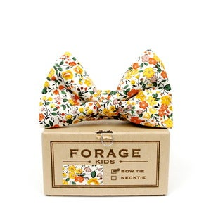 Image of harvest {kids bow tie}