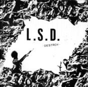 "Image of LSD ""Destroy"" 7"" (One Sided)"