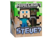 Image of Minecraft Steve Vinyl