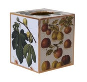 Image of Figs & Apple Tissue Box